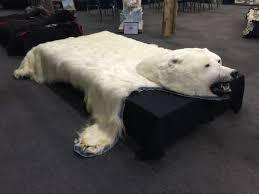 Polar Bear Fur Rug Massive Polar Bear Ursus Maritimus Rug 9 U0027 Long X 8 U0027 4 U0027 U0027 Wide