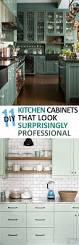 Diy Kitchen Cabinets Makeover Kitchen Cabinet Remodel Diy Cabinets Renovating Cupboards Best