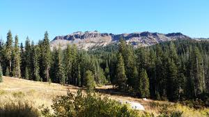 Kerry Campbell Homes Floor Plans by Towle Mountain Homes For Sale Truckee Ca Dickson Realty