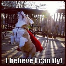 I Believe I Can Fly Meme - i believe i can touch the sky imgur