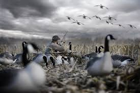 Layout Blind For Sale Low Rider Ii Layout Blind Rig U0027em Right Waterfowl Hunting