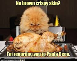 a turkey humor happy thanksgiving