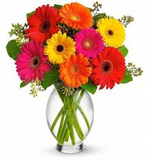 gerbera colors gerbera brights bouquet flower bouquets radiant and