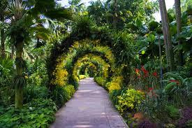 City Botanic Gardens Singapore Bid Botanic Garden As Our Unesco World Heritage