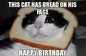Meme Happy - cat happy birthday memes images good morning images