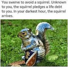 Dramatic Squirrel Meme - you swerve to avoid a squirrel unknown to you the squirrel pledges