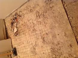 How To Replace Subfloor In Bathroom Gutted Bathroom Slight Water Damage Not Sure To Replace Subfloor