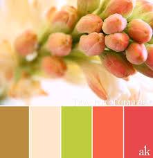 24 best boysen color inspiration images on pinterest color
