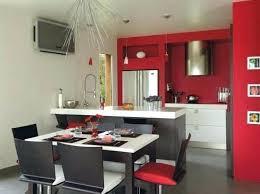 salon et cuisine ouverte idee deco salon cuisine ouverte pour idees de decoration newsindo co