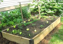 garden trellis design amusing vegetable garden trellis also twine ve able garden trellis
