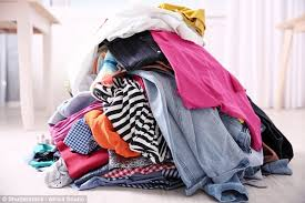 Dirty Talk In The Bedroom Bed Bugs Are Attracted To Dirty Laundry Shows Study Daily Mail