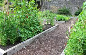 How To Plant Vertical Garden - vertical gardening