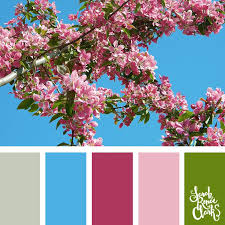 color schemes 2017 30 color palettes inspired by the pantone spring 2017 color trends