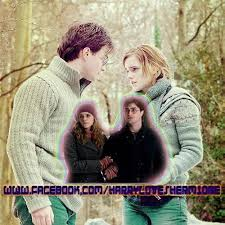 harry potter hermione harry potter and hermione granger forever home facebook