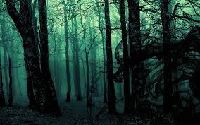 wallpaper tumblr forest dark forest backgrounds wallpaper cave