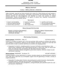 Biology Resume Download Biology Resume Haadyaooverbayresort Com