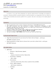 sle resume templates accountant general chennai gpf slip essay role of women 2 essay in war woman world four paragraph