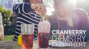 thanksgiving science activities cranberry chemistry thanksgiving science experiment youtube