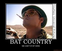 Country Meme - image 260832 we can t stop here this is bat country know