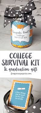 high school graduation gift college survival kit diy graduation gift frog prince paperie