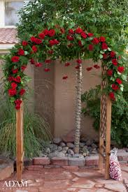 wedding arch las vegas best 25 florist las vegas ideas on card table set