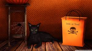 cat halloween background trick u0027r treat wallpapers group 72