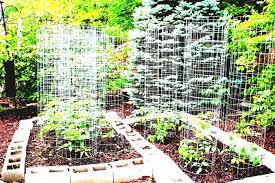 modern garden design ideas to try in small gardens dfeeeda