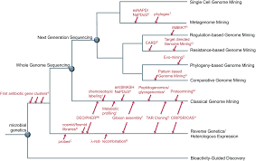 the evolution of genome mining in microbes u2013 a review natural