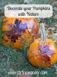Decorate Pumpkin Decorate Your Pumpkins With Nature Stir The Wonder