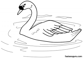 printable bird swan coloring pages printable coloring pages kids