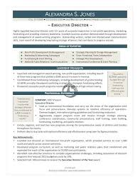 sample resume for non profit organization project manager free