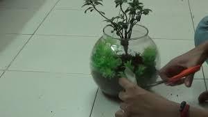 making a mini garden in a glass bowl terrarium youtube