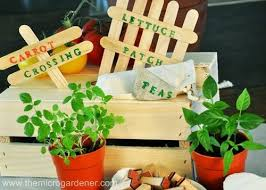 Vegetable Garden Labels by 9 Best Vegetable Garden Theme Party Images On Pinterest