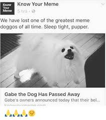 Know Your Meme Dog - know your meme know your meme 5 hrs we have lost one of the greatest
