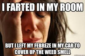 Febreze Meme - i farted in my room but i left my febreze in my car to cover up
