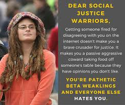 Social Justice Warrior Meme - memes poking social justice warriors right in the eye gallery