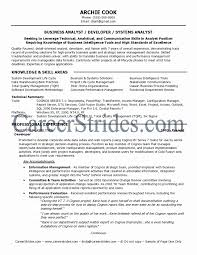 business intelligence project manager cover letter civil inspector