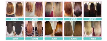 hair vitamins for healthy longer hair growth how it works