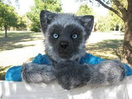 silver fox semi realistic mascot partial w