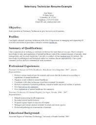 mechanic resume sample aviation and electrical technician