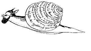snail u0027s pace