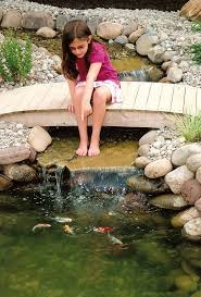 backyard ponds for small backyards can be built in different