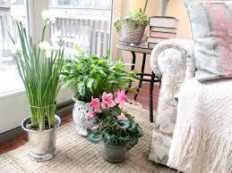 Garden Supplies Indoor Garden Supplies When To Plant Garden Seeds Indoors Growco