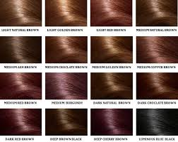 mahogany hair color chart how to select right hair color one click beauty care