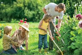 family gardening 5 diy pest control tips that help minimize invading pest pest