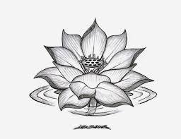 tattoo flower drawings flowers drawings tattoos many flowers