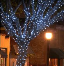 st louis clear tree lights outdoor lighting and