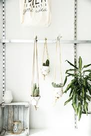 hanging plants diy cactus diy plants interior inspiration