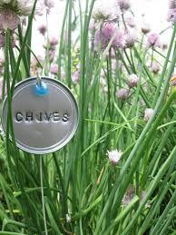 garden markers diy garden plant marker inspiration arcadia farms
