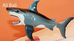 happy shark toy feeding pet shark youtube